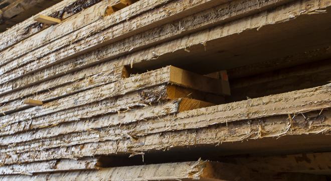 Schnittholz im Lager der Holzhandlung Blömer